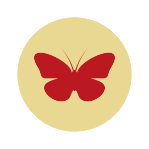 An illustration with a red butterfly.